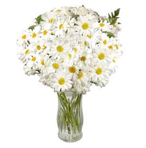 Bouquet Happy moment
