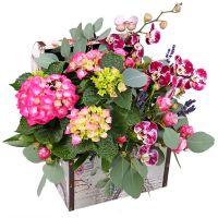 Bouquet Lilac chest