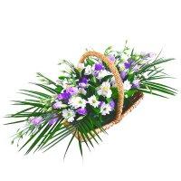 Bouquet Constellation